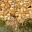 Aged bicycle rusty on stone wall romantic melancholy - Stock Photo