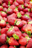 Strawberries background fruits focus on foreground — Stock Photo