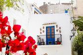 Ibiza white island architecture corner bougainvilleas — Stock Photo