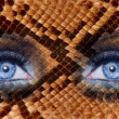 Blue fashion makeup eyes leopard jaguar skin texture — Stock Photo #5808615