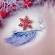 Christmas star concept eye makeup winter red silver — Stock Photo #5808657