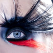 Black bird woman eye makeup macro — Stock Photo
