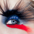 Black bird woman eye makeup macro night city eyelid - Foto Stock