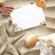 Copyspace blank space summer starfish sand shells — Stock Photo #5935705