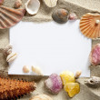 copyspace blank space summer starfish sand shells — Stock Photo #5935747