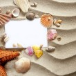 Copyspace blank space summer starfish sand shells — Stock Photo