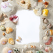 Border frame summer beach shell blank copy space — Stock Photo #5936229