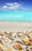 Beach sand starfish print caribbean tropical sea — Stock Photo