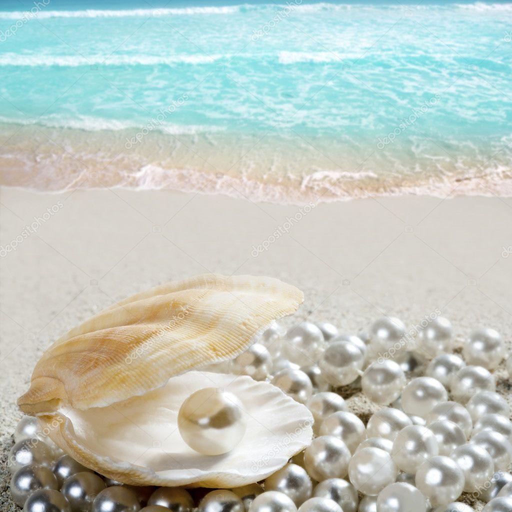 Perla dei caraibi sulla tropicale spiaggia di sabbia for Disegni di casa sulla spiaggia tropicale