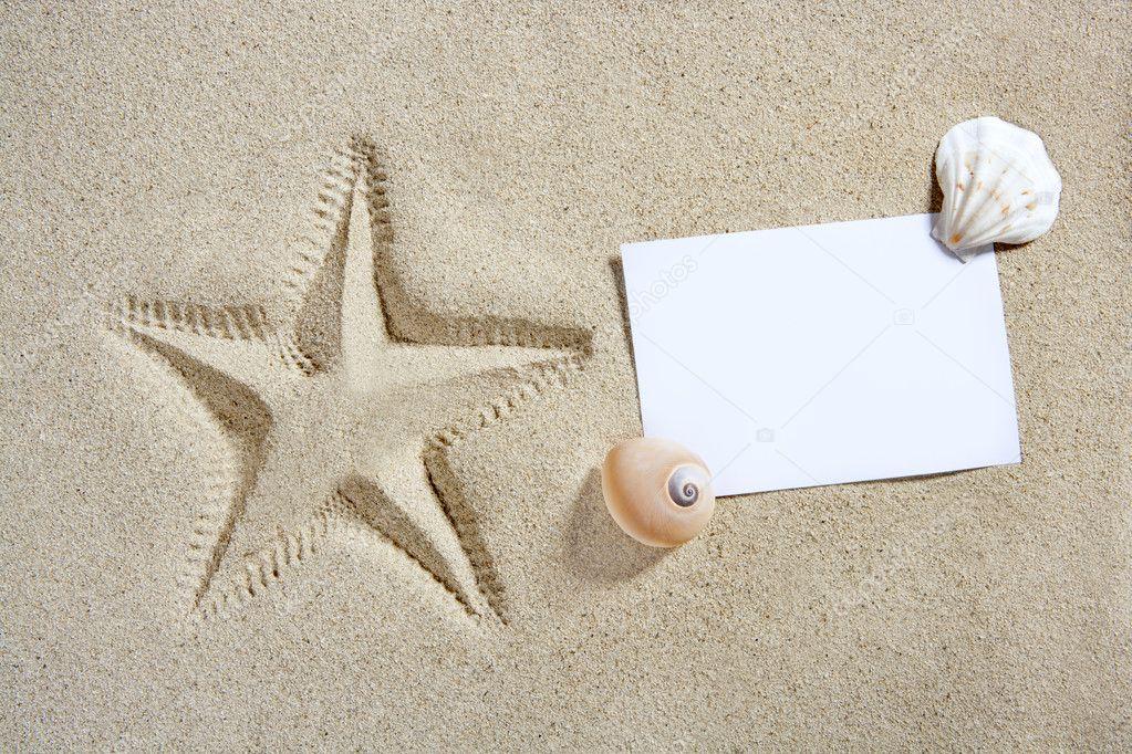 ways not to start a essay on starfish starfish internal anatomy essay tulsa spider control