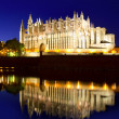 Cathedral of Majorca in Palma de Mallorca Balearic islands — Stok fotoğraf