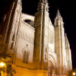 Cathedral of Majorca in Palma de Mallorca night — Stock Photo #6132902