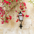 Bougainvilleas in stone wall and street light in Mediterranean - Stock Photo