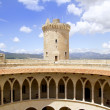 Castle Castillo de Bellver in Majorca at Palma of Mallorca - ストック写真