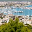 City of Palma de Mallorca in Majorca Balearic island - Stock Photo
