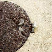 Mannloch überlaufen von wasser an einem regnerischen tag — Stockfoto