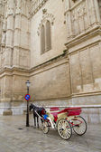 Carriage with horse in Majorca cathedral in Palma — Stock Photo