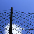 Wire mesh fence — Stock Photo #6312688