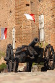 Cannon — Stock Photo