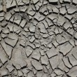 Stock Photo: Silt texture