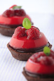 Chocolate and raspberry cakes — Foto de Stock