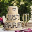 Luxurious wedding cake and two champagne flute glasses — Stock Photo #6209630