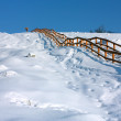 Winter path with wood ladder — Stock Photo