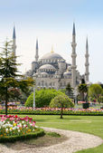 The Blue Mosque — Stock Photo