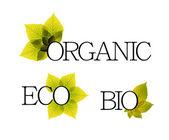 Bio, bio ed eco etichette con elementi floreali — Vettoriale Stock