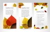 Färska naturliga hösten vertikala banderoller med blad — Stockvektor
