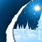Snowy winter night landscape — Stock Vector