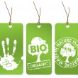 Set of three green tags for organic — Imagen vectorial