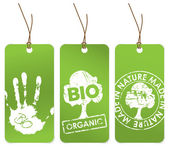 Set of three green tags for organic — Stock Vector