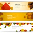 Fresh natural fall vector horizontal banners with leafs — Stock Vector