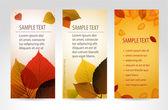 Queda natural fresco banners verticais de vetor com folhas — Vetor de Stock
