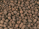 Background texture of stone gravel — Stock Photo