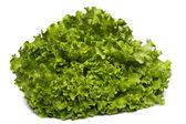 Green lettuce — Stock Photo