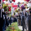 Procession of torch flowers — Stock Photo