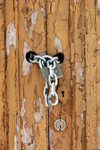 Worn wooden door detail — Stock Photo
