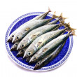 Atlantic mackerel — Stock Photo #6572373