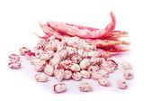 Borlotti beans — Stock Photo