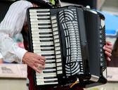 Accordion player — Stock Photo