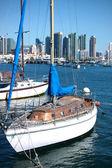 Marina with city view — Stock Photo