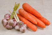 The carrots and garlic from kitchen garden — Stock Photo