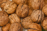 The many circassian nuts — Stockfoto