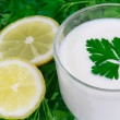 The kefir, fresh lemon and greens - Stock fotografie