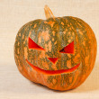The big cheerful halloween pumpkin — Stock Photo #6060279