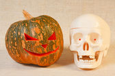 The cheerful halloween pumpkin and skull — Stock Photo