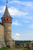 The medieval fortress in Carpathians, Ukraine — Stock Photo
