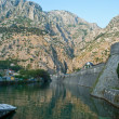 View on the old town Kotor — Stock Photo